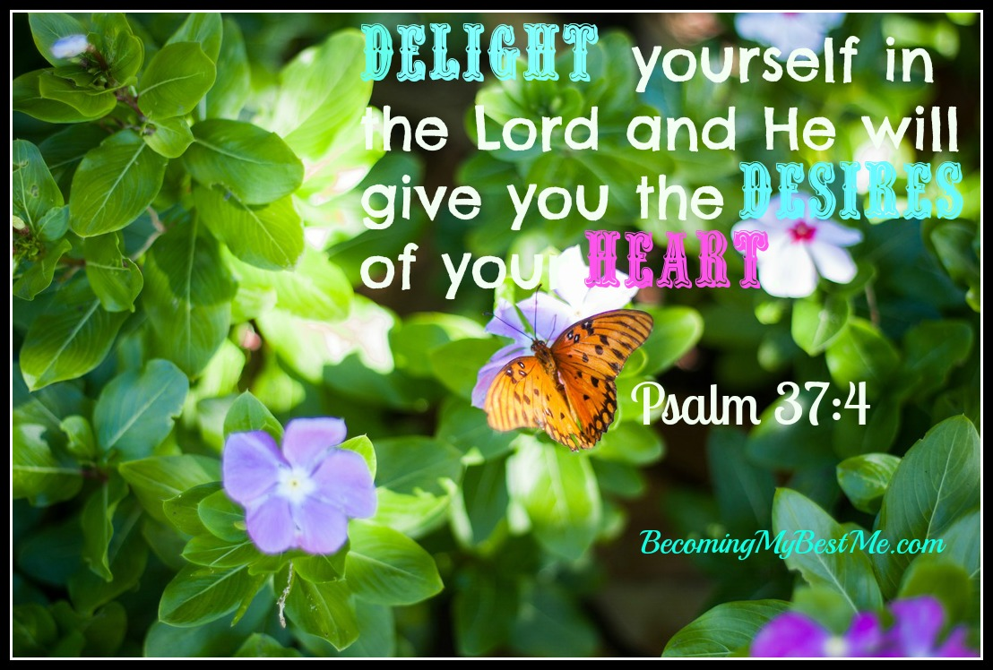 Delight Yourself   Psalm 37 4