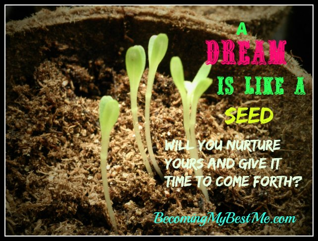 Is Your Dream in Seed Form?
