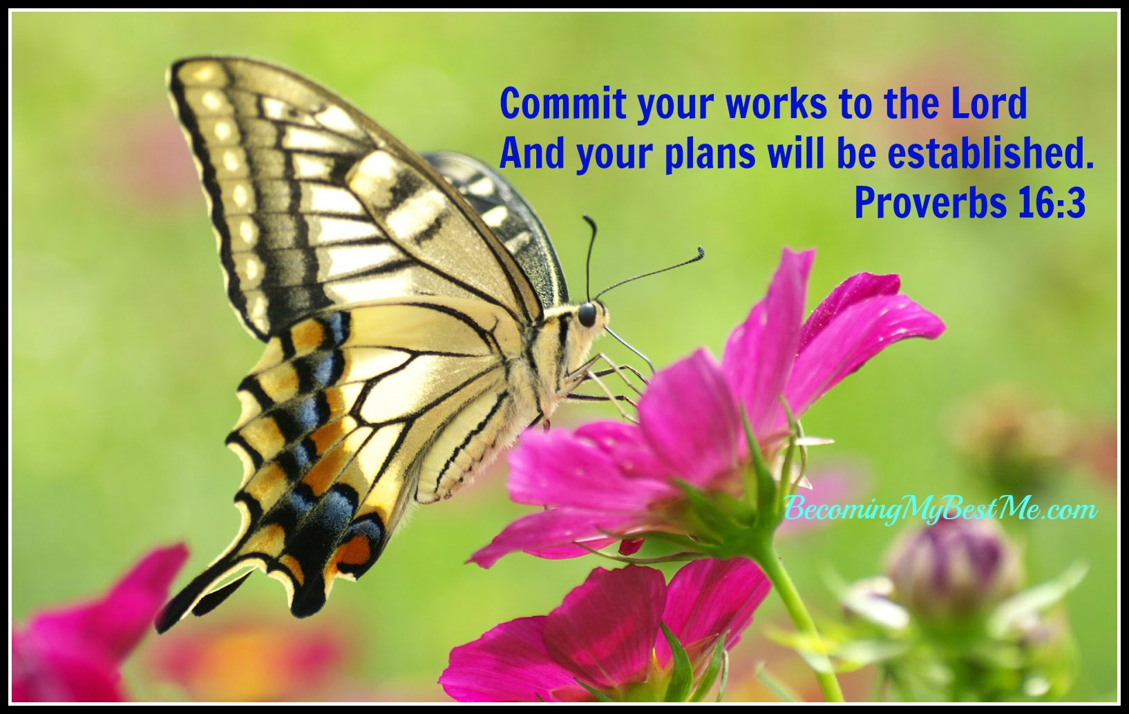 Commit your plans to God